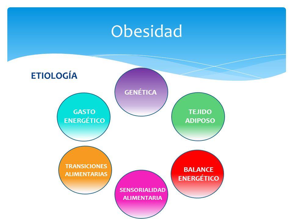 TRANSICIONES ALIMENTARIAS SENSORIALIDAD ALIMENTARIA