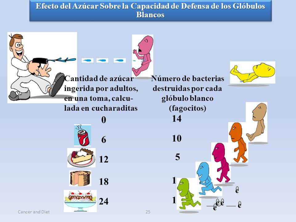 Número de bacterias destruidas por cada glóbulo blanco (fagocitos)