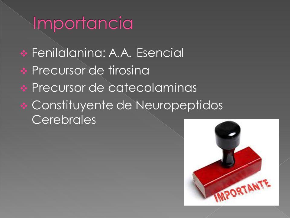 Importancia Fenilalanina: A.A. Esencial Precursor de tirosina