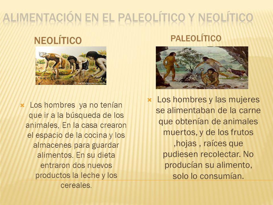 ALIMENTACIÓN EN EL PALeOLÍTICO Y NEOLÍTICO