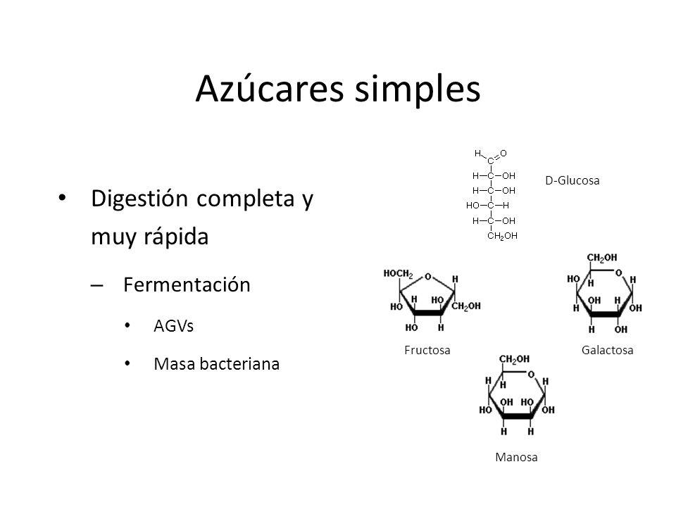 Azúcares simples Digestión completa y muy rápida Fermentación AGVs