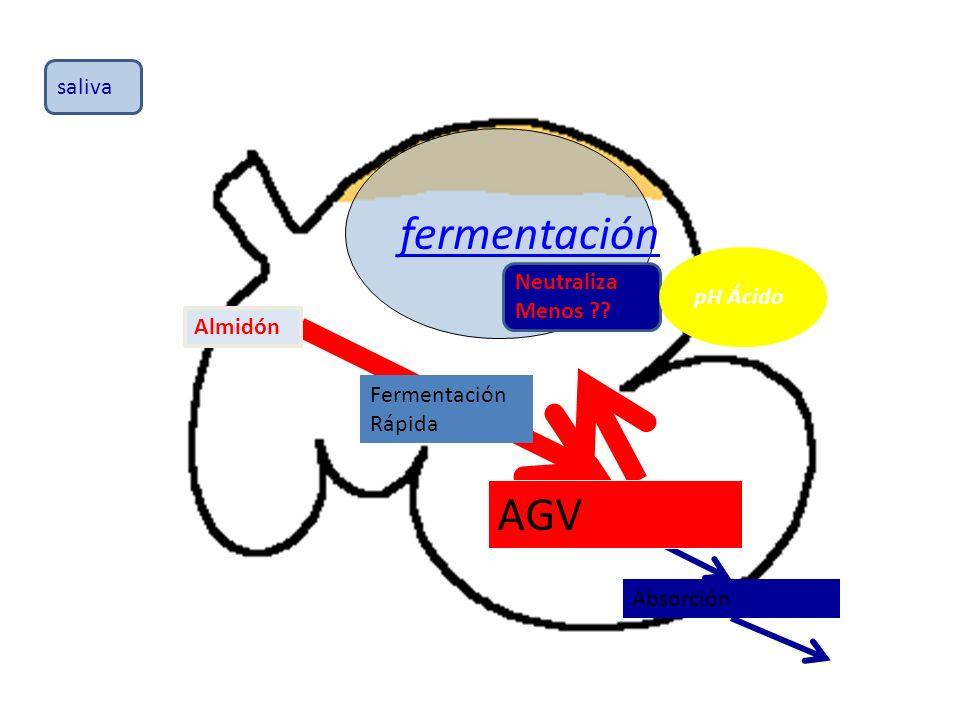 fermentación AGV saliva pH Ácido Neutraliza Menos Almidón