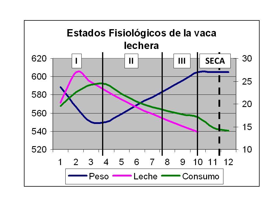 I II III SECA