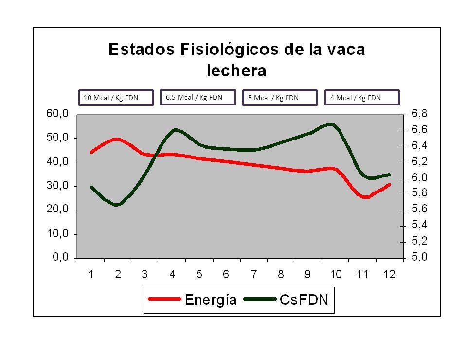 10 Mcal / Kg FDN 6.5 Mcal / Kg FDN. 5 Mcal / Kg FDN.