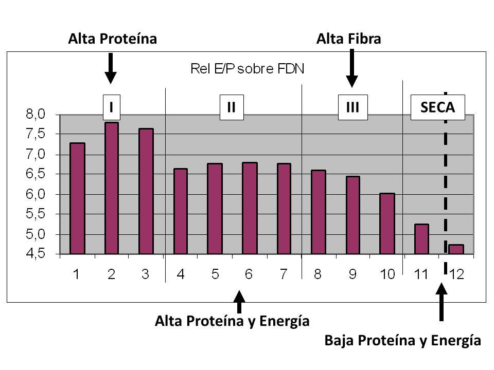 Alta Proteína Alta Fibra I II III SECA Alta Proteína y Energía Baja Proteína y Energía
