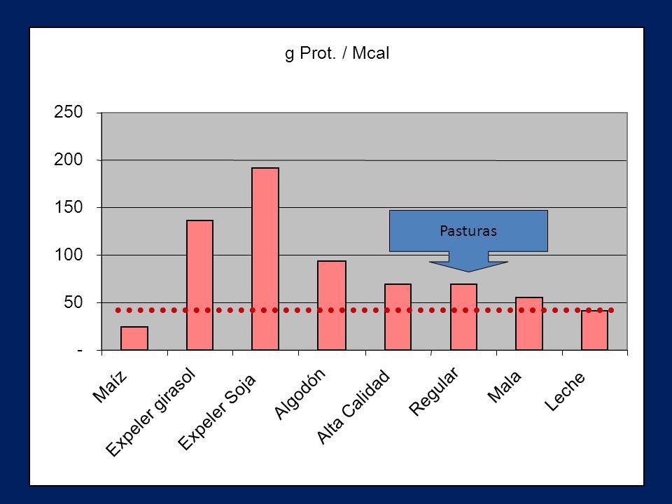 g Prot. / Mcal 250 200 150 100 50 - Maíz Algodón Regular Mala Leche