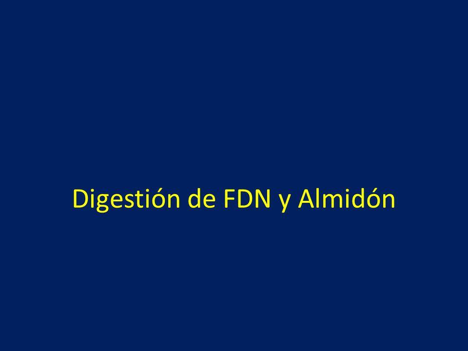 Digestión de FDN y Almidón