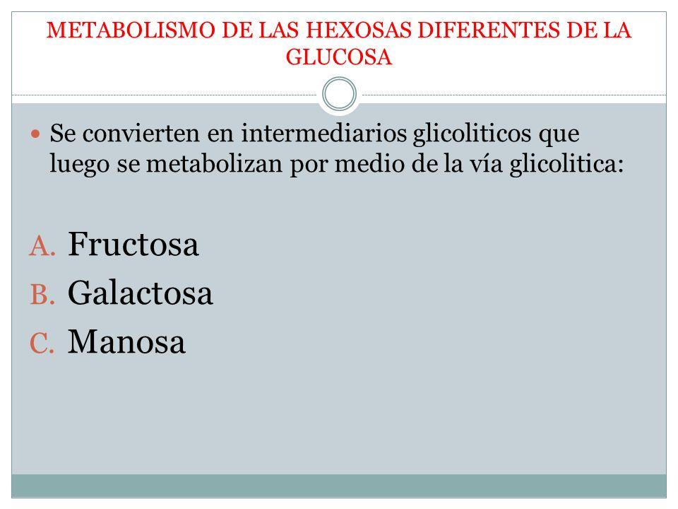 METABOLISMO DE LAS HEXOSAS DIFERENTES DE LA GLUCOSA