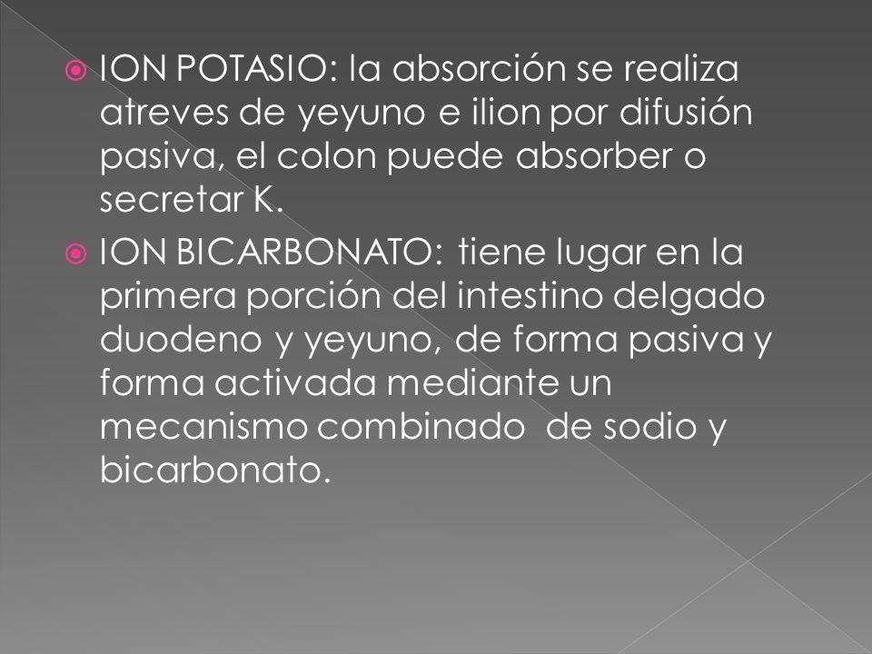 ION POTASIO: la absorción se realiza atreves de yeyuno e ilion por difusión pasiva, el colon puede absorber o secretar K.