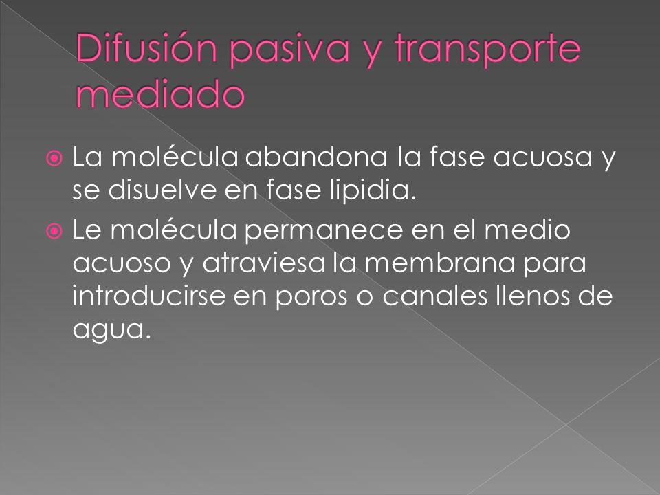 Difusión pasiva y transporte mediado