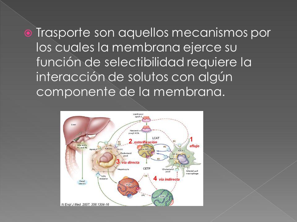 Trasporte son aquellos mecanismos por los cuales la membrana ejerce su función de selectibilidad requiere la interacción de solutos con algún componente de la membrana.