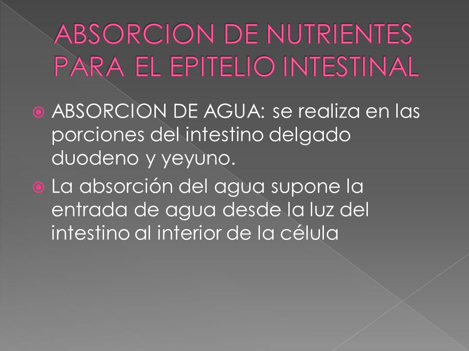 ABSORCION DE NUTRIENTES PARA EL EPITELIO INTESTINAL