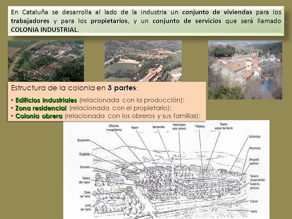 Estructura de la colonia en 3 partes: