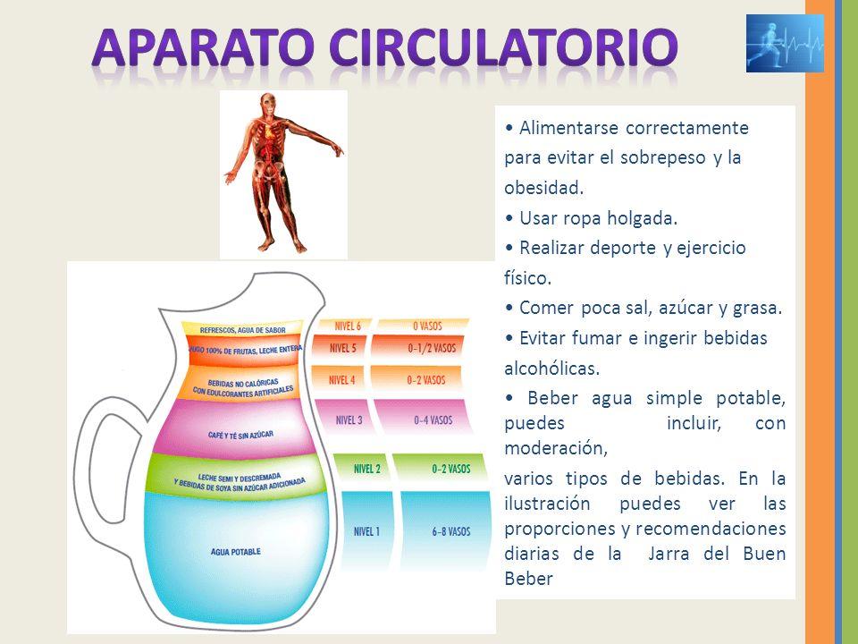 APARATO CIRCULATORIO • Alimentarse correctamente