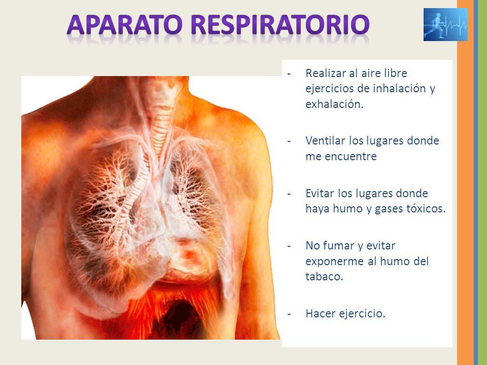APARATO RESPIRATORIO Realizar al aire libre ejercicios de inhalación y exhalación. Ventilar los lugares donde me encuentre.