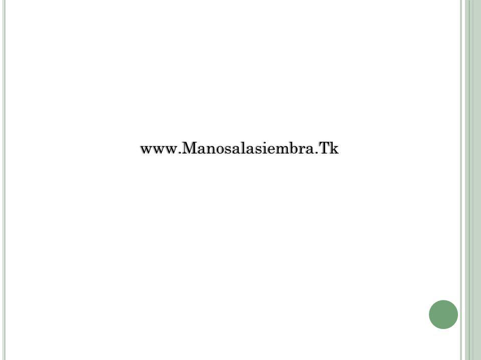 www.Manosalasiembra.Tk