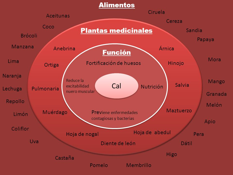 Cal Alimentos Plantas medicinales Función Ciruela Aceitunas Cereza