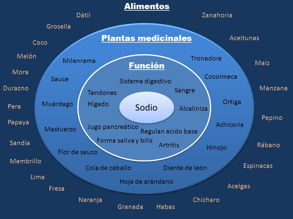 Sodio Alimentos Plantas medicinales Función Dátil Zanahoria Grosella