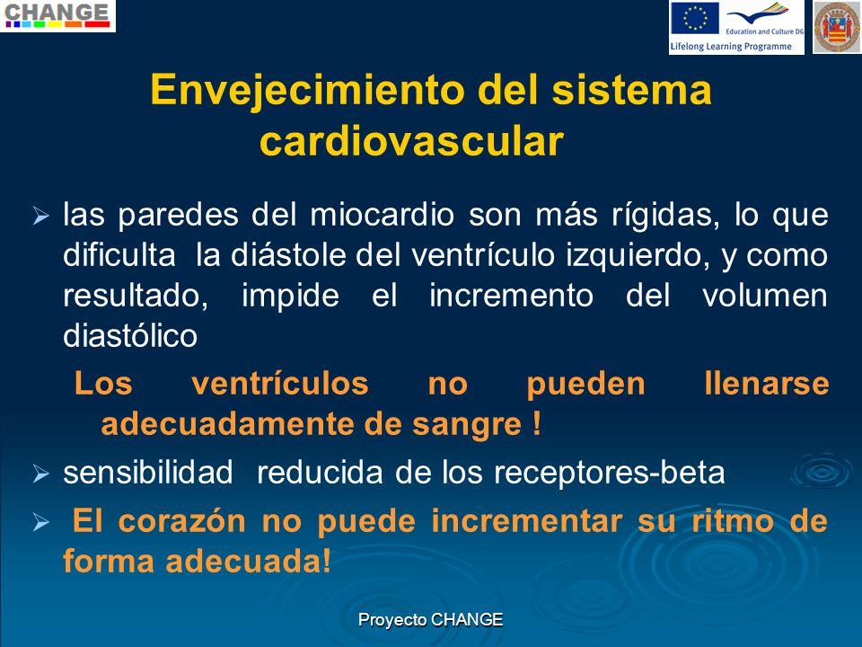 Envejecimiento del sistema cardiovascular