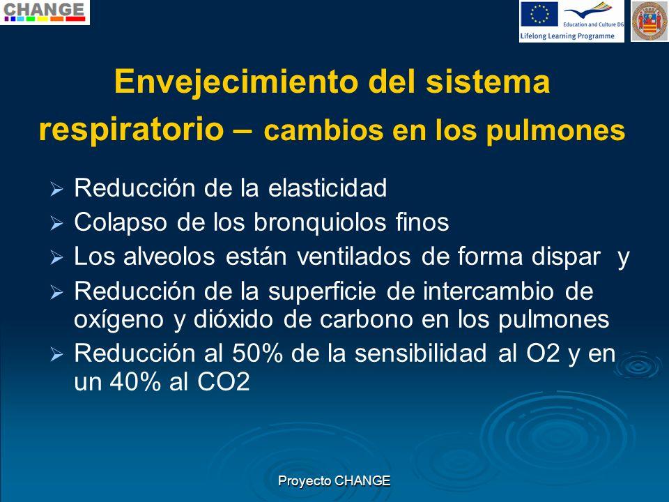 Envejecimiento del sistema respiratorio – cambios en los pulmones