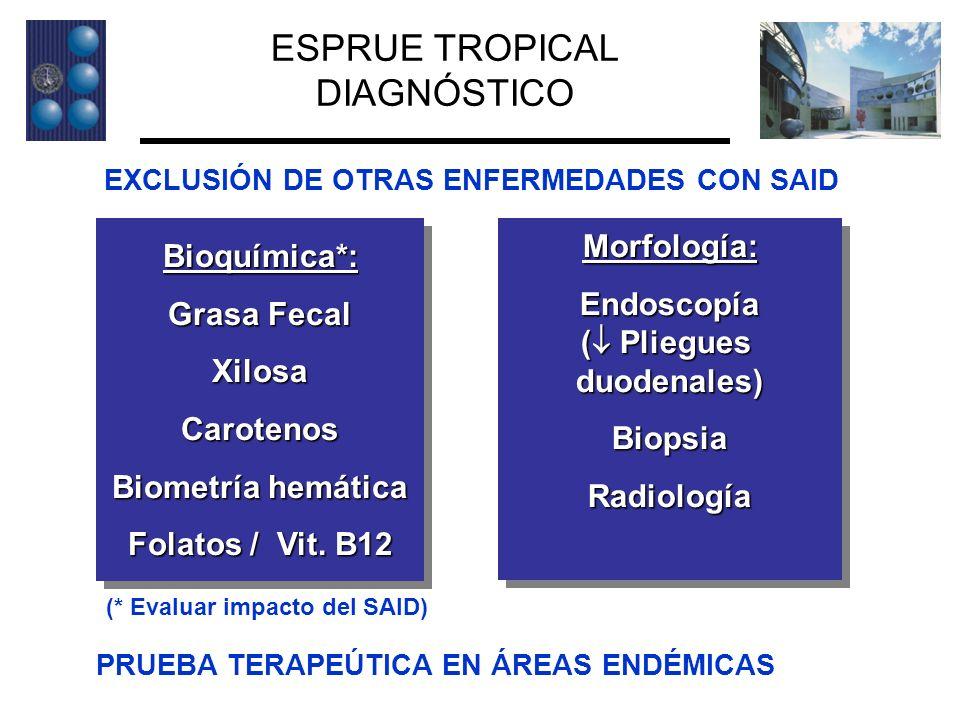 ESPRUE TROPICAL DIAGNÓSTICO Morfología: Bioquímica*: Endoscopía