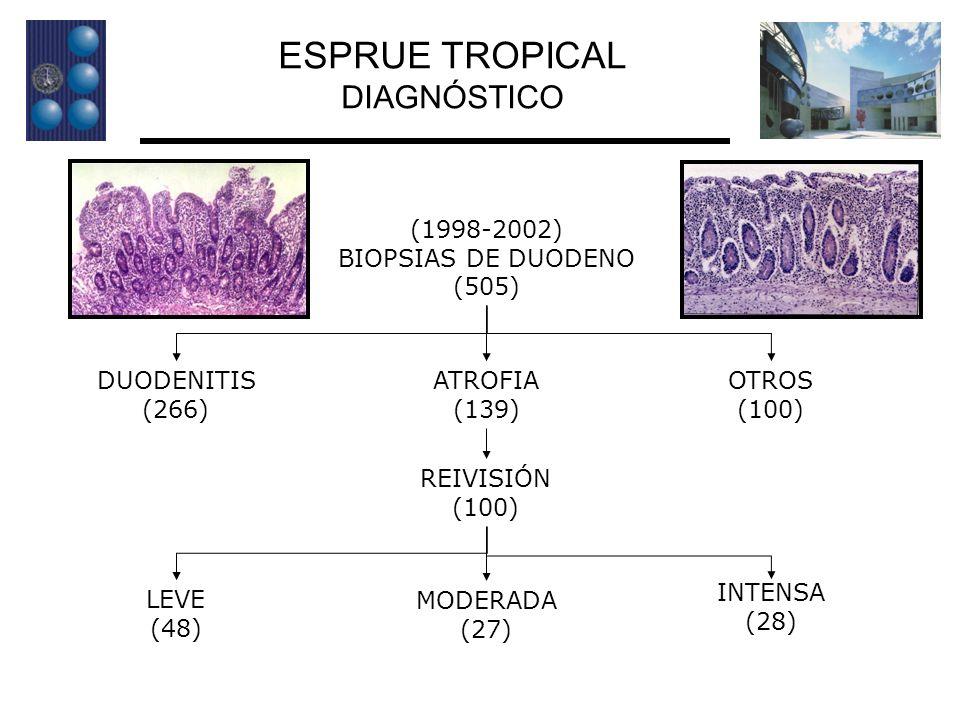 ESPRUE TROPICAL DIAGNÓSTICO (1998-2002) BIOPSIAS DE DUODENO (505)