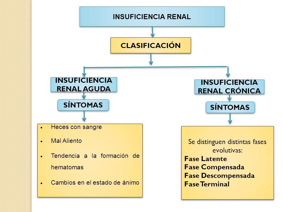 INSUFICIENCIA RENAL AGUDA INSUFICIENCIA RENAL CRÓNICA
