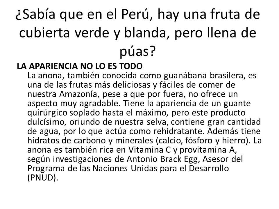 ¿Sabía que en el Perú, hay una fruta de cubierta verde y blanda, pero llena de púas