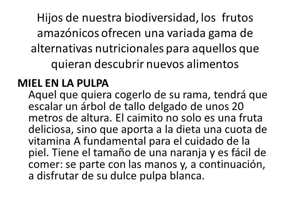 Hijos de nuestra biodiversidad, los frutos amazónicos ofrecen una variada gama de alternativas nutricionales para aquellos que quieran descubrir nuevos alimentos