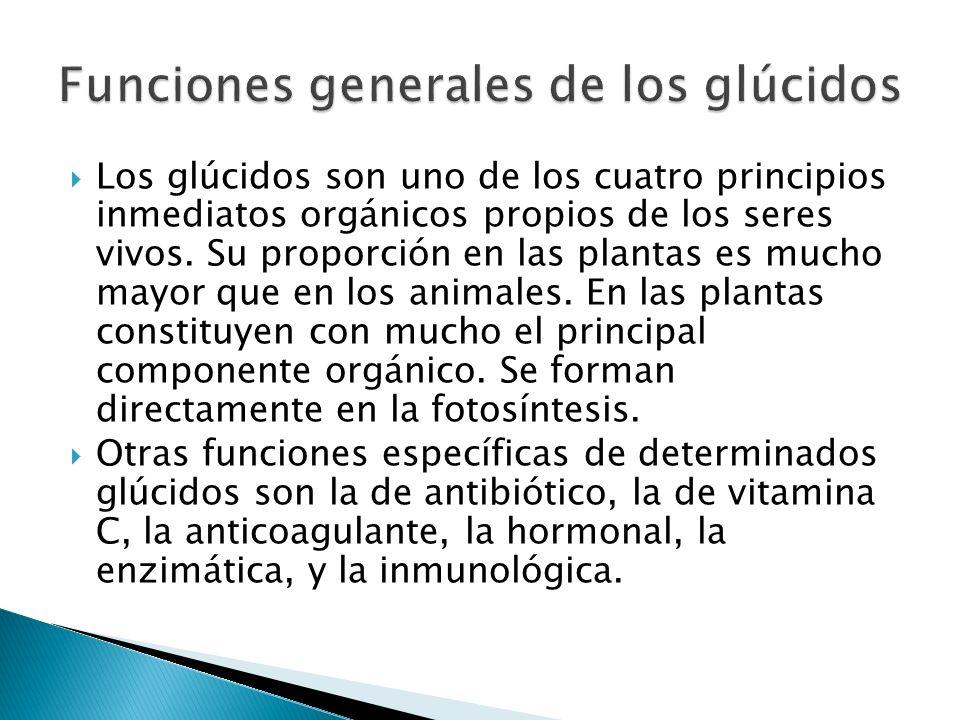 Funciones generales de los glúcidos