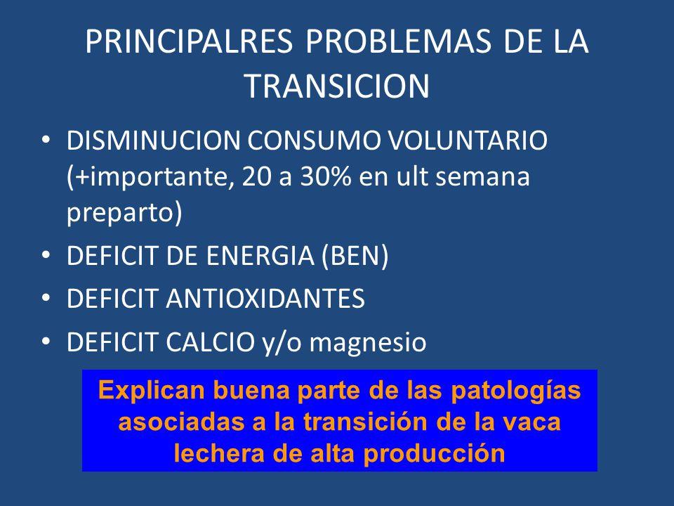 PRINCIPALRES PROBLEMAS DE LA TRANSICION