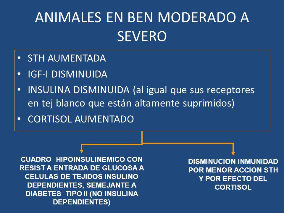 ANIMALES EN BEN MODERADO A SEVERO