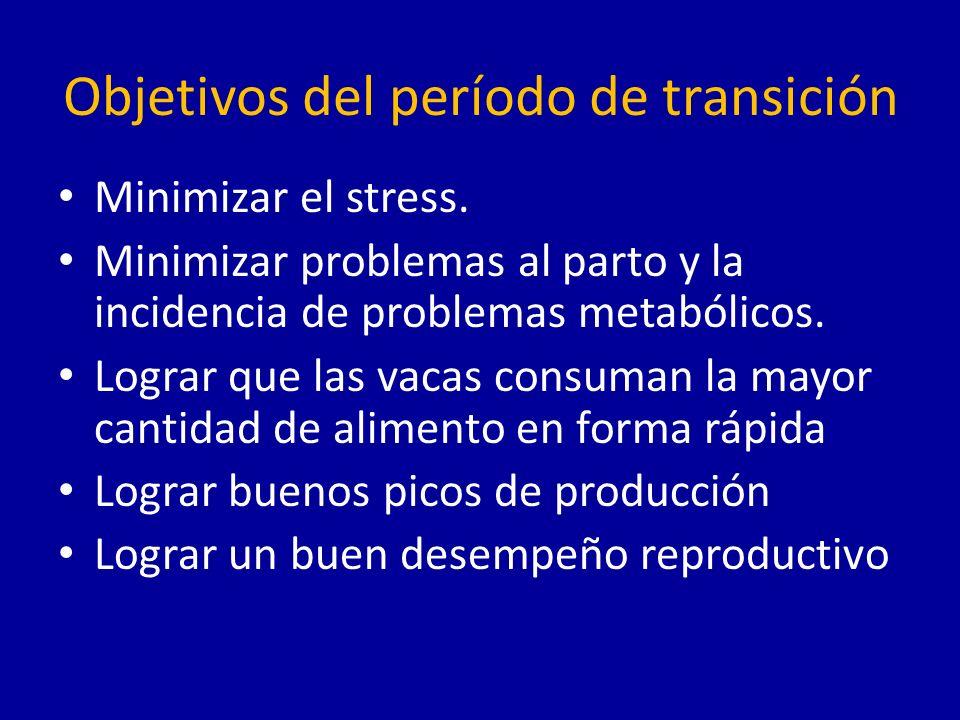 Objetivos del período de transición
