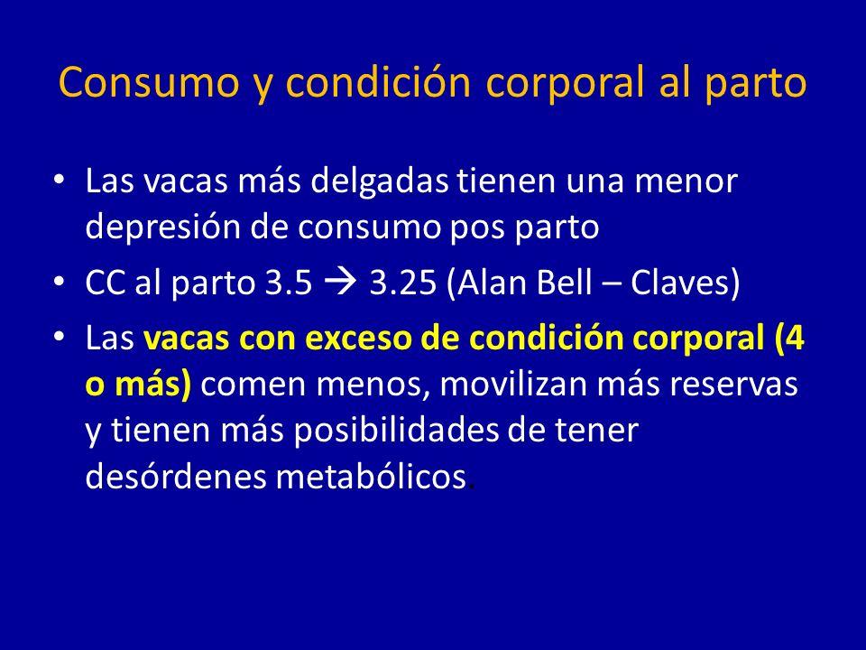 Consumo y condición corporal al parto