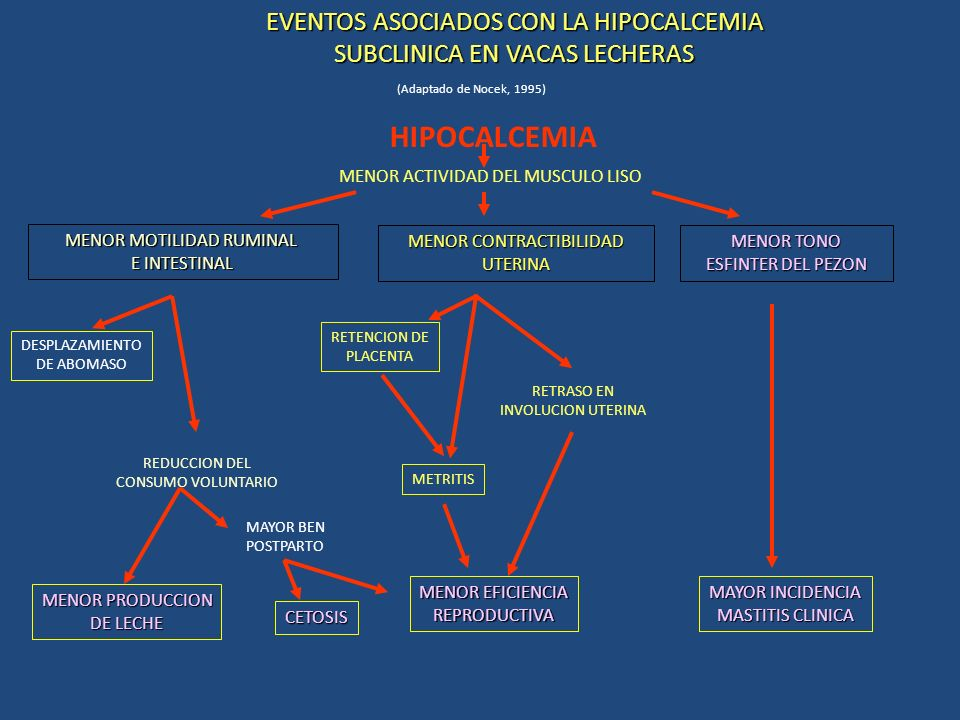 HIPOCALCEMIA EVENTOS ASOCIADOS CON LA HIPOCALCEMIA