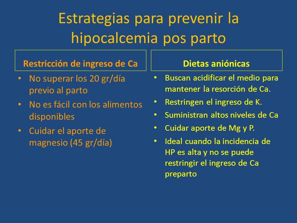 Estrategias para prevenir la hipocalcemia pos parto