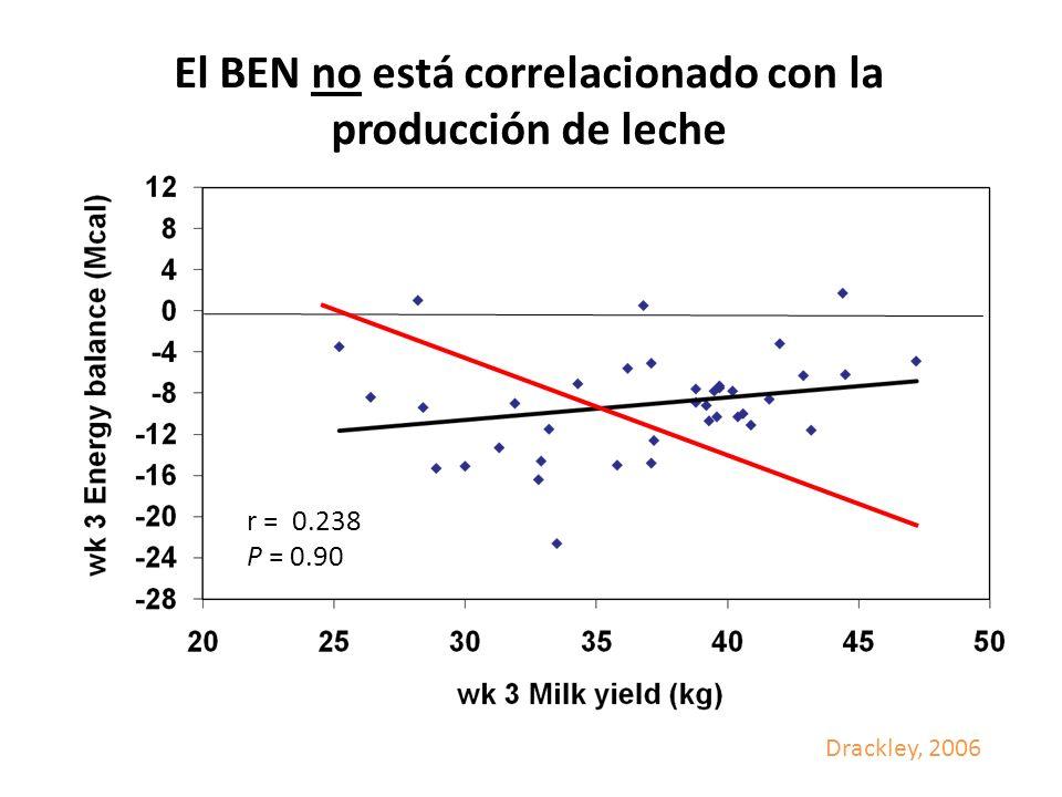 El BEN no está correlacionado con la producción de leche