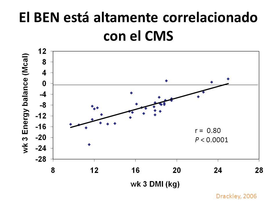 El BEN está altamente correlacionado con el CMS