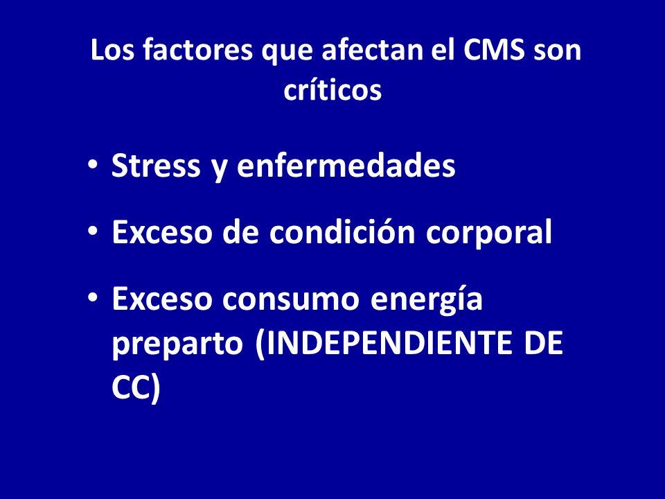 Los factores que afectan el CMS son críticos