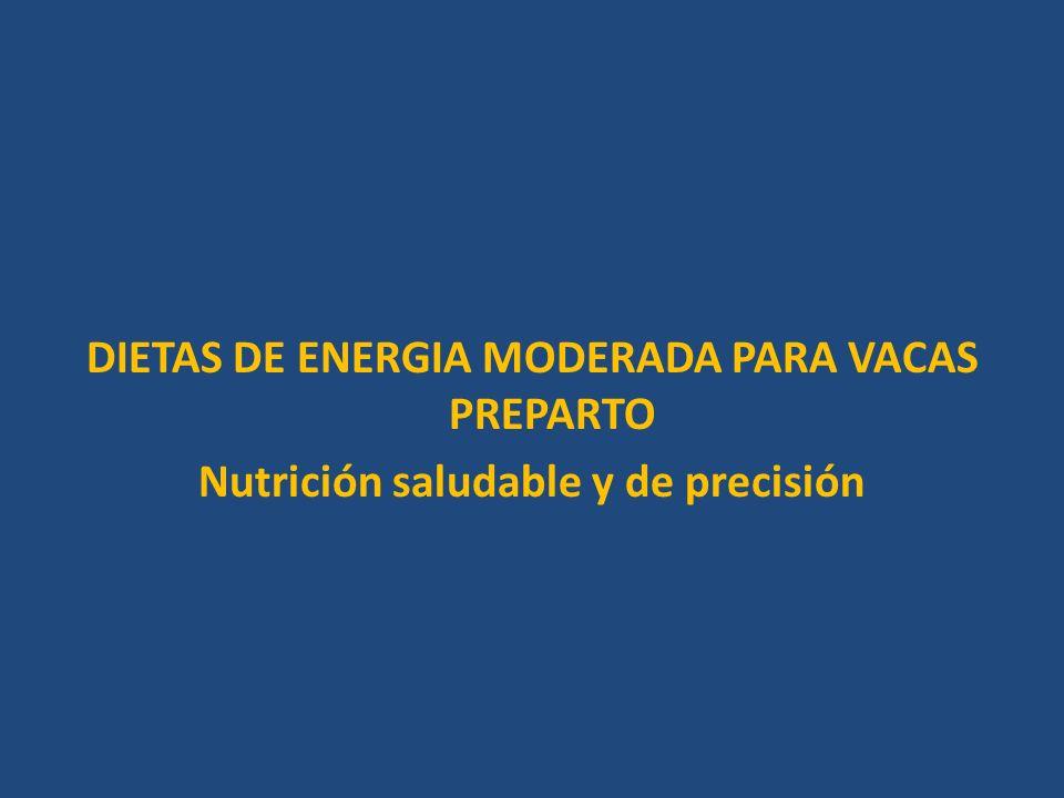 DIETAS DE ENERGIA MODERADA PARA VACAS PREPARTO