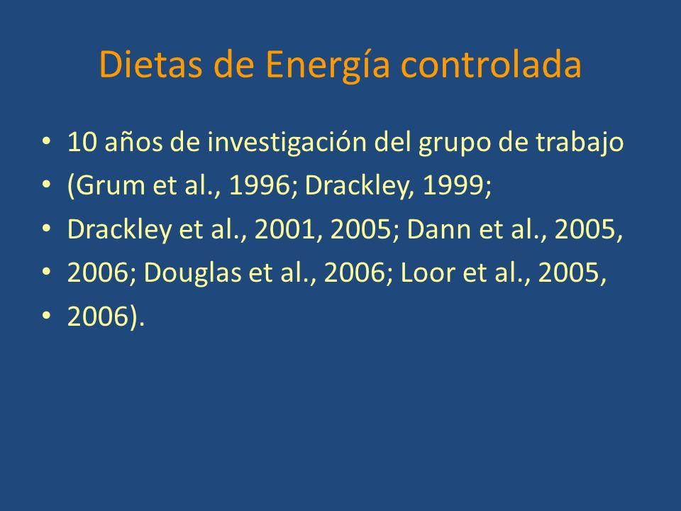 Dietas de Energía controlada