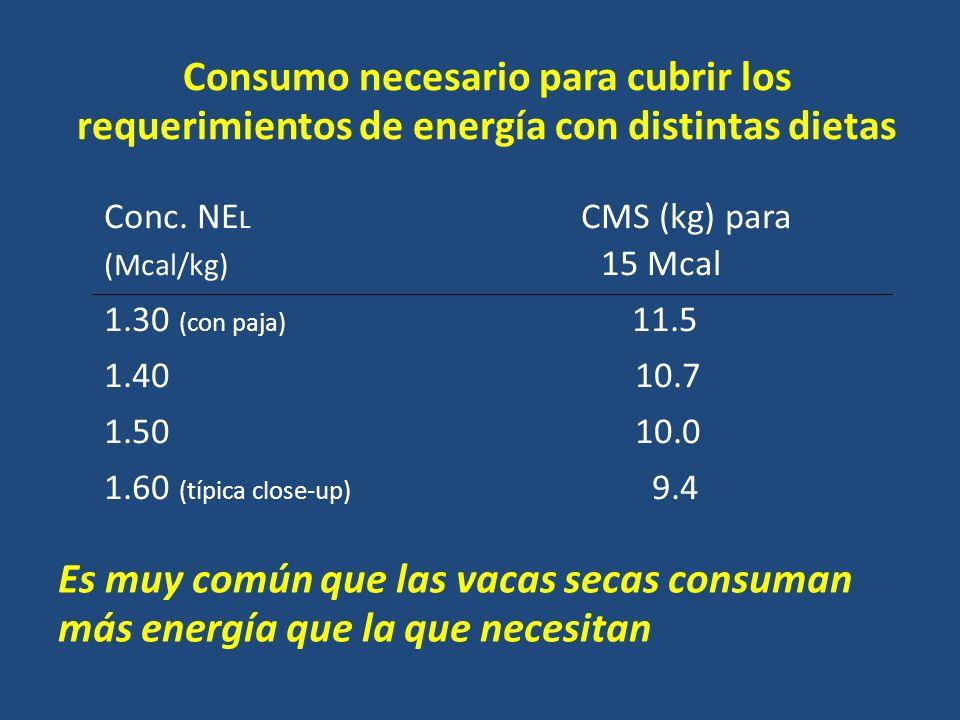 Consumo necesario para cubrir los requerimientos de energía con distintas dietas