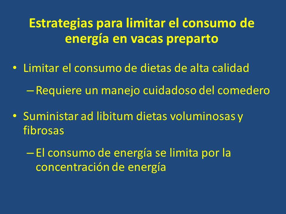 Estrategias para limitar el consumo de energía en vacas preparto