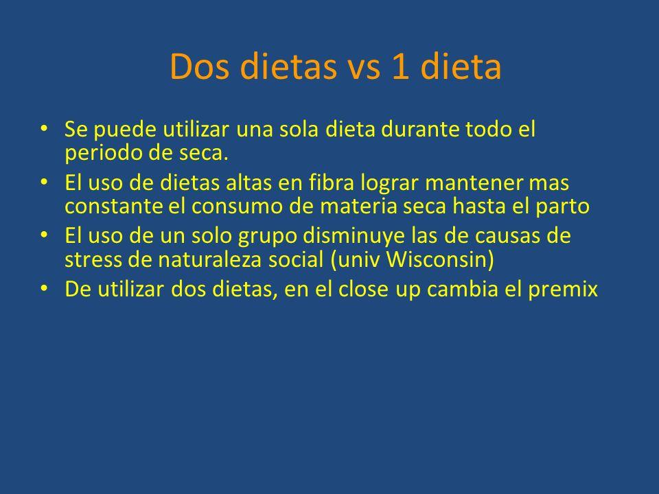 Dos dietas vs 1 dieta Se puede utilizar una sola dieta durante todo el periodo de seca.