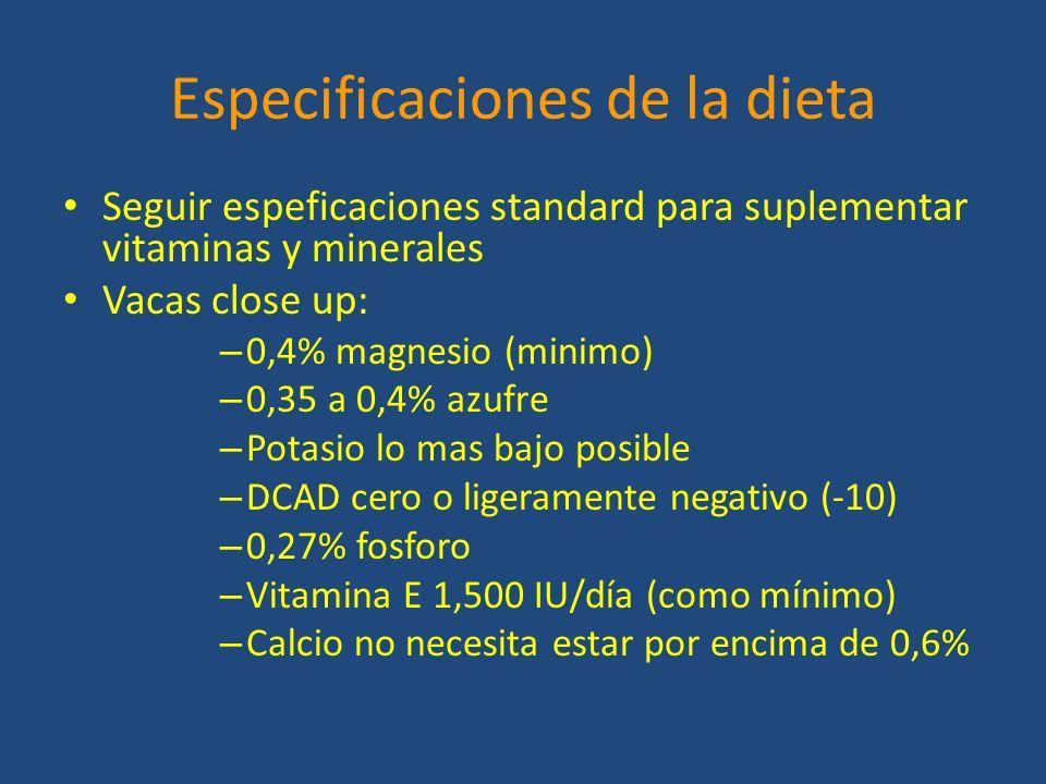 Especificaciones de la dieta