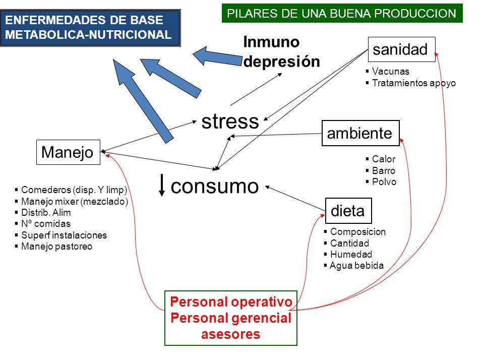 stress consumo Inmuno sanidad depresión ambiente Manejo dieta