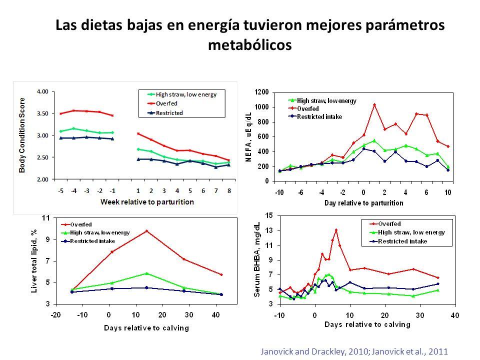 Las dietas bajas en energía tuvieron mejores parámetros metabólicos