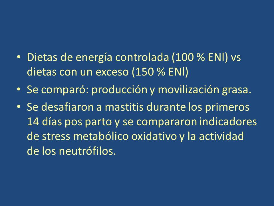 Dietas de energía controlada (100 % ENl) vs dietas con un exceso (150 % ENl)