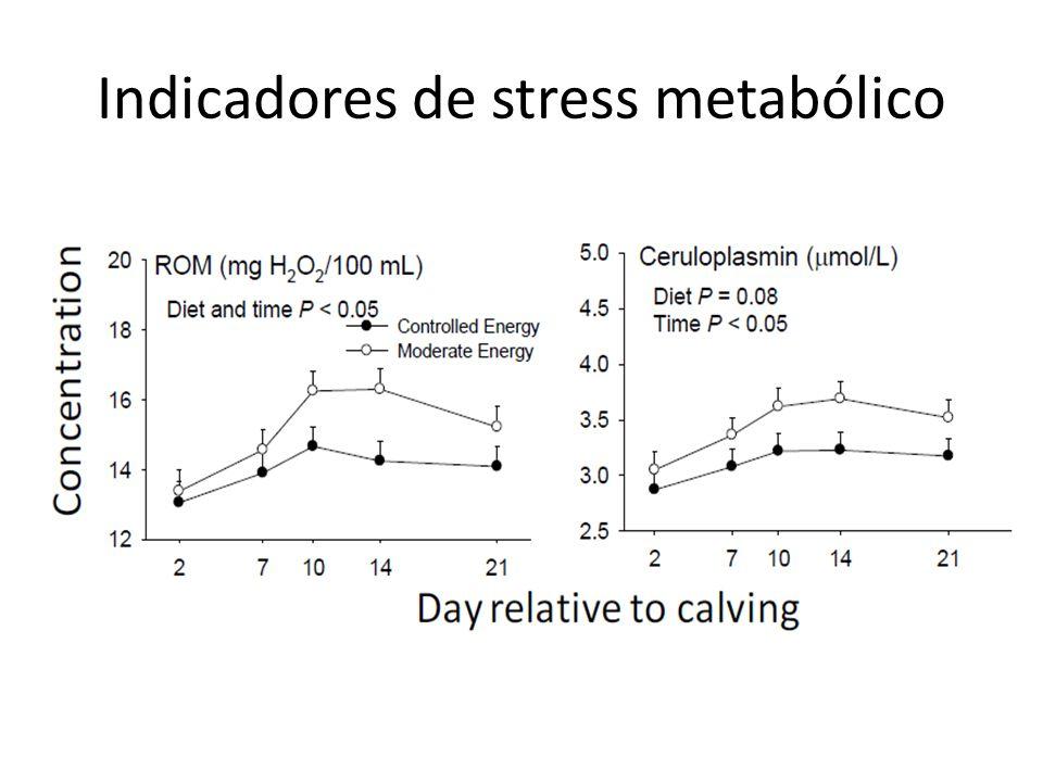 Indicadores de stress metabólico