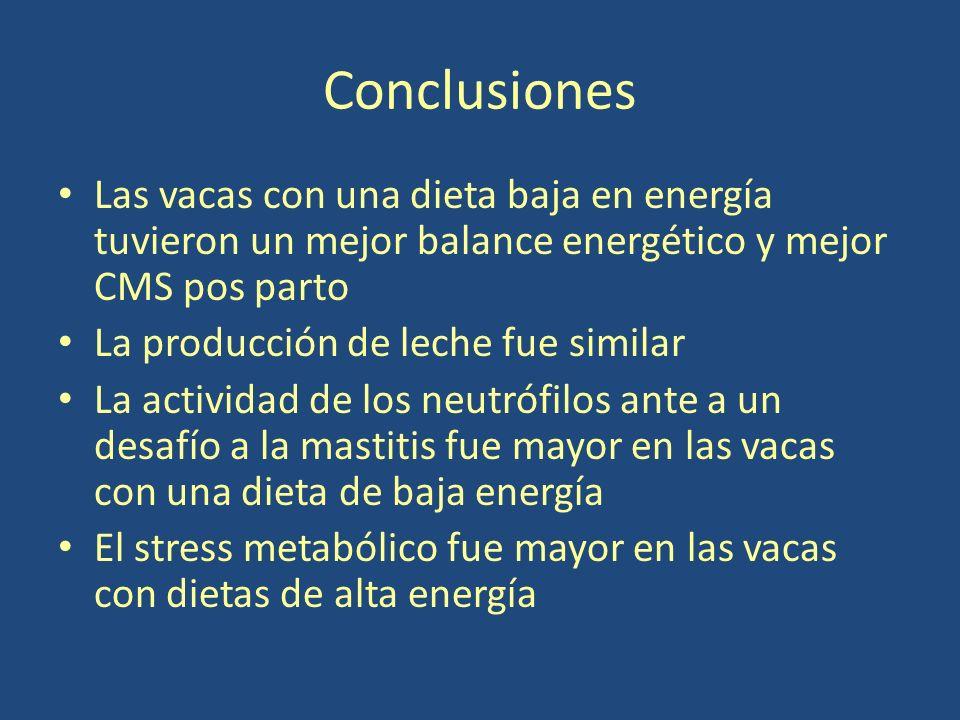 Conclusiones Las vacas con una dieta baja en energía tuvieron un mejor balance energético y mejor CMS pos parto.